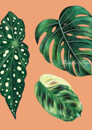SIte-plants