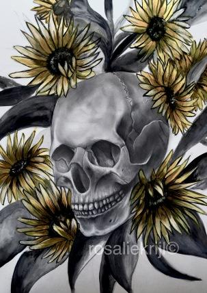 2018-Sun-Skull