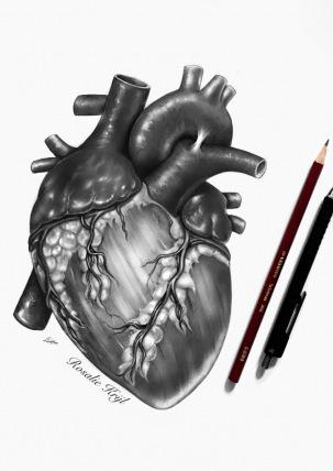 2017-Heart